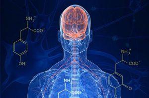 Parkinson link articulos