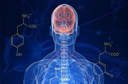 Tratamiento parkinson cannabinoides | Kalapa Clinic