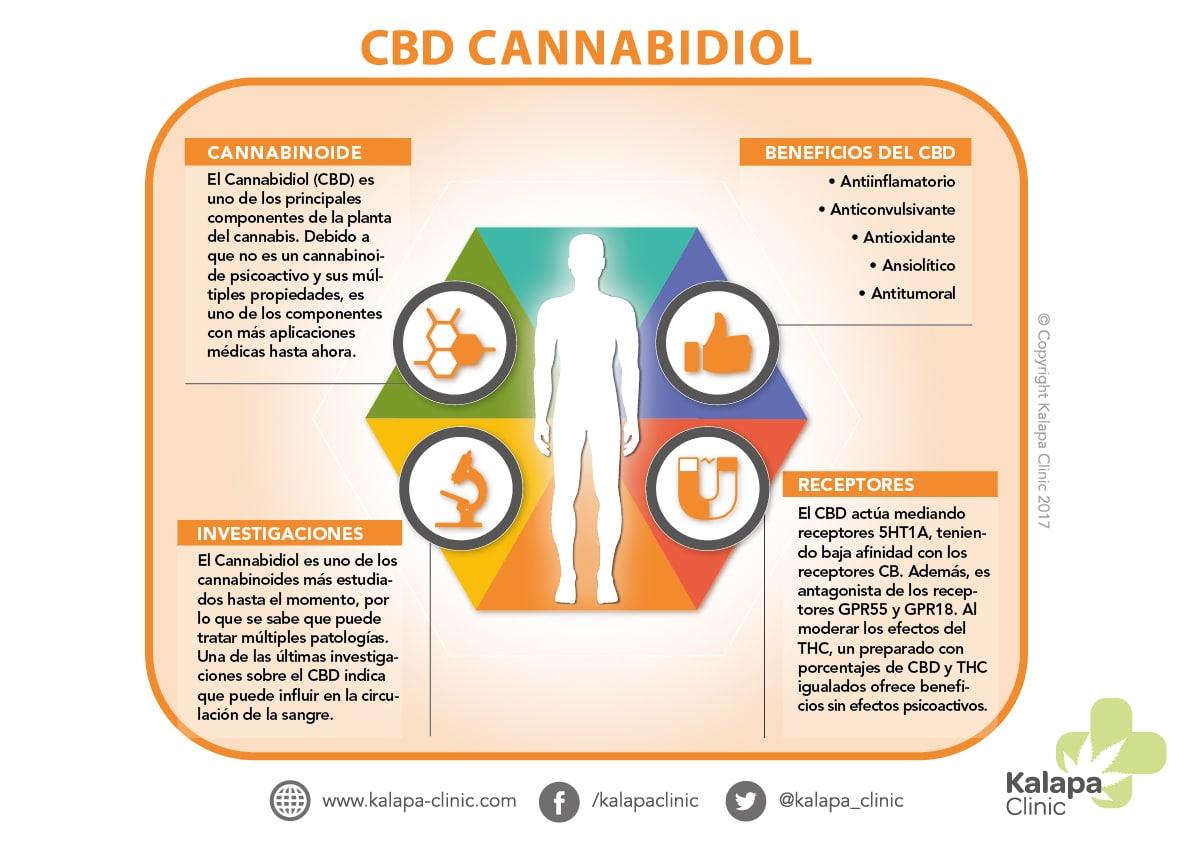 Infografia Cannabidiol Efectos Terapeuticos | Kalapa Clinic