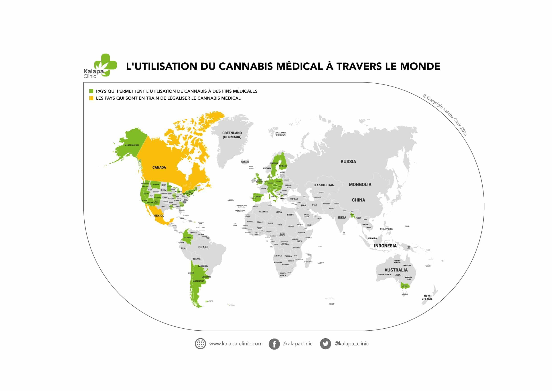 Qu'en est-il du cannabis médical dans le monde?