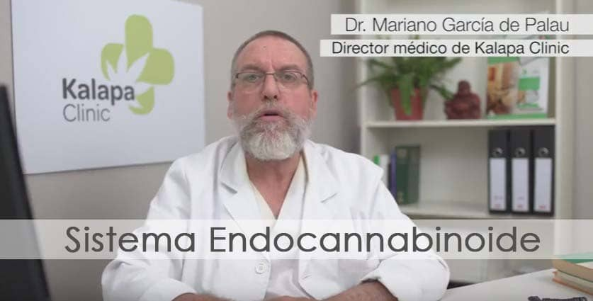 sistema endocannabinoide video | Kalapa Clinic