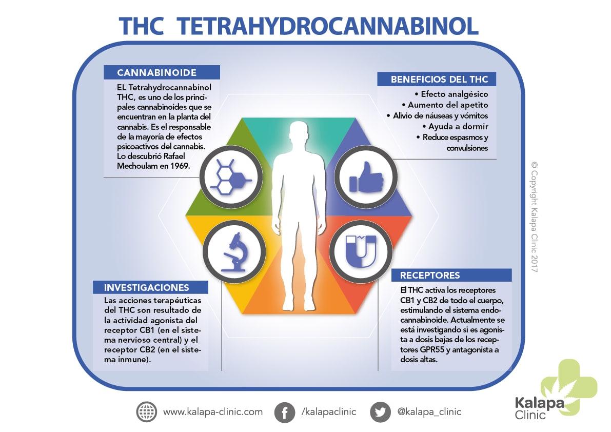 Potencial Terapeutico Tetrahidrocannabinol | Kalapa Clinic