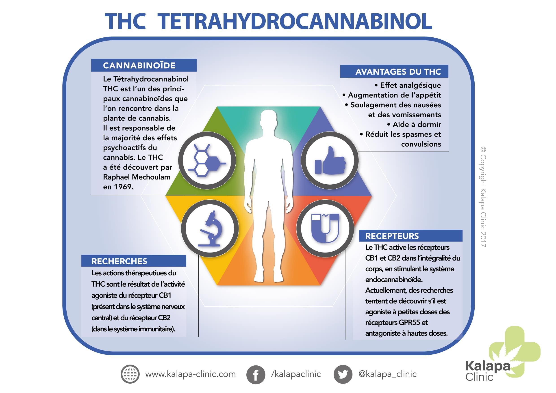 Potentiel thérapeutique du THC