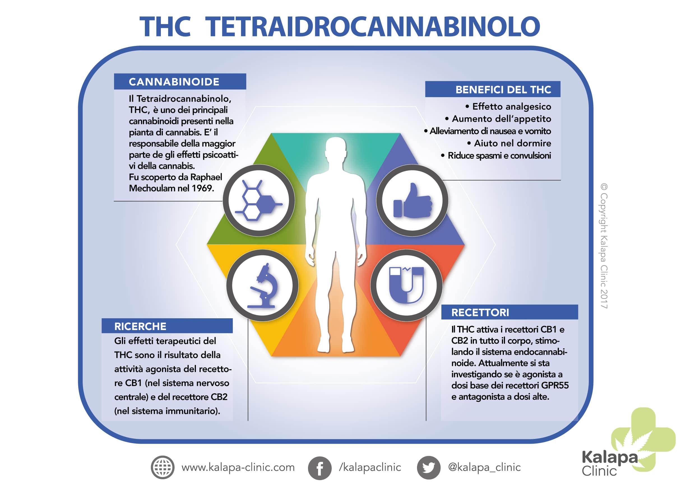 THC - Tetraidrocannabinolo e il suo potenziale terapeutico