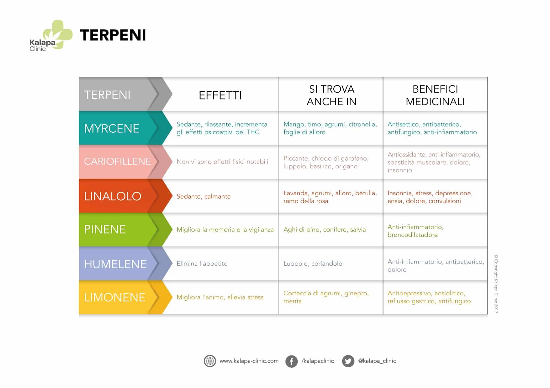 lista terpeni e proprietà terapeutiche
