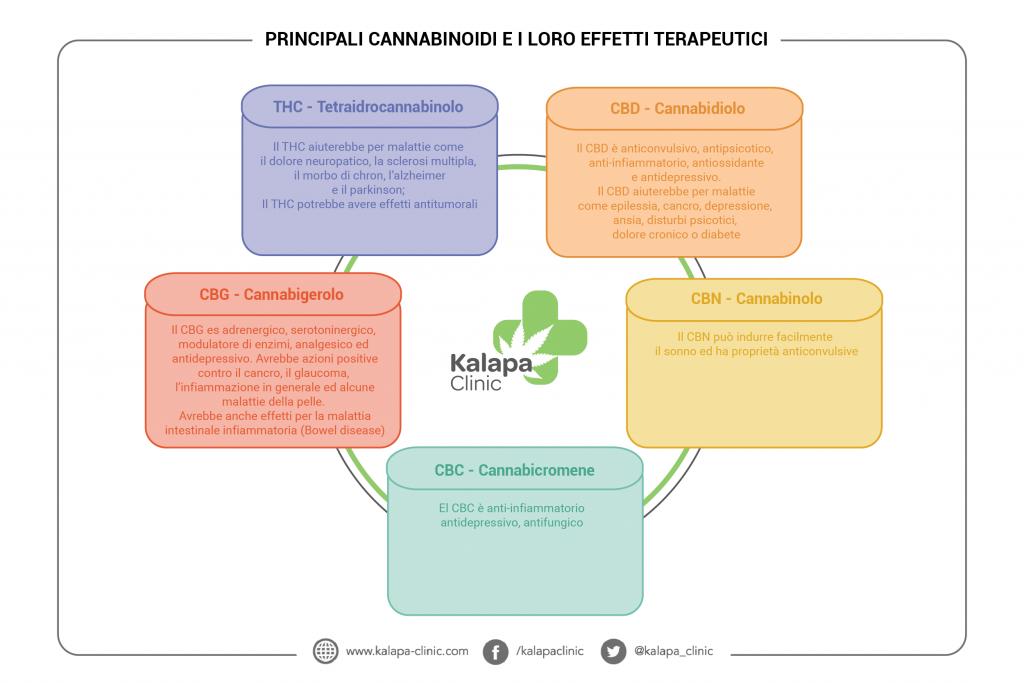 cannabinoidi-e-i-loro-effetti-terapeutici