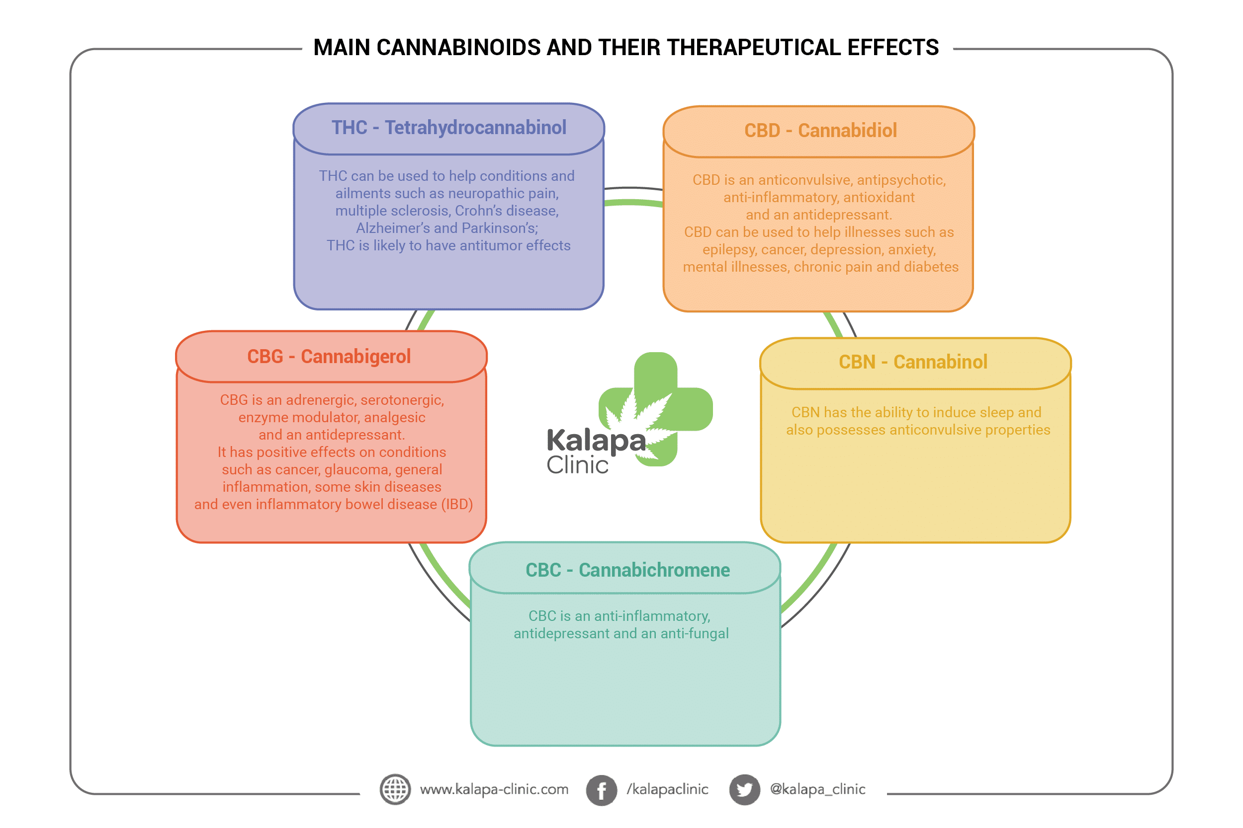 the main cannabinoids and their therapeutic effects