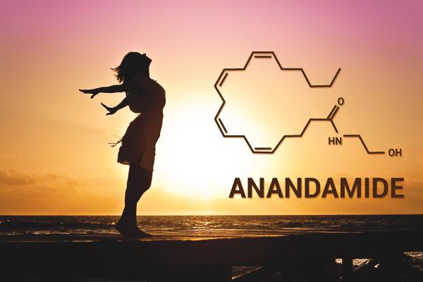 anandamide | Kalapa Clinic | hemp oil treatments