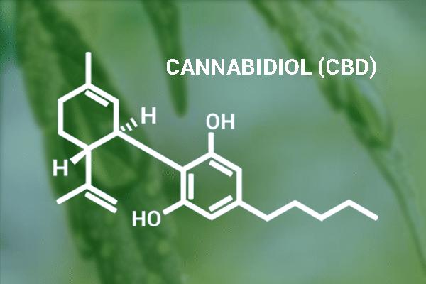 cannabidiol-cannabidiolo-WADA