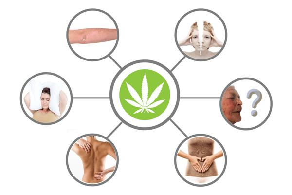 cannabis-terapeutica-medical-cannabis-cannabis-medicinal-medizinischem-cannabis-medicinal