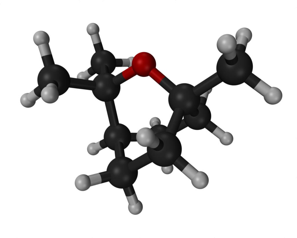 Eucaliptol | Terpeni di Cannabis | Kalapa Clinic