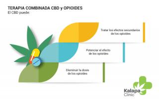 cbd vs opioides
