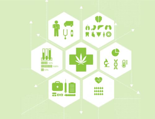 Los efectos del cannabis medicinal en la salud