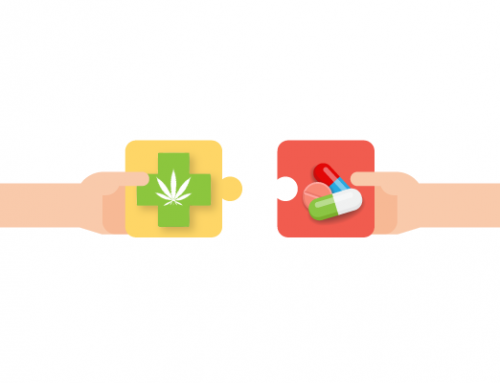 The use of cannabis in addition to opioids can reduce opiate uptake and improve quality of life