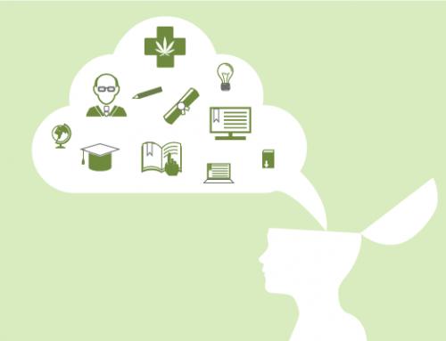 La formación médica sobre en cannabis medicinal
