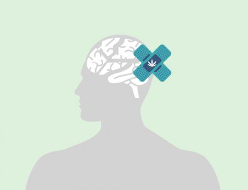 Cannabinoides para tratar traumatismos cerebrales
