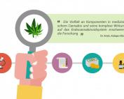 Forschung von medizinischem Cannabis