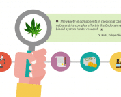 research medical cannabis
