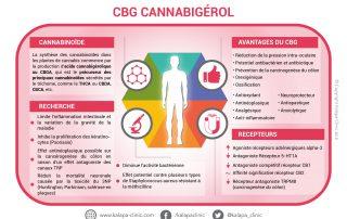 CBG cannabigérol