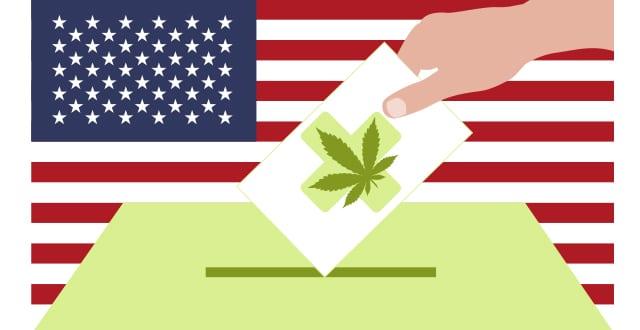 elecciones legalización del cannabis-legalizzazione della cannabis