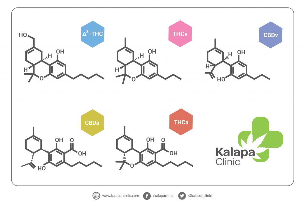 cannabinoides-cannabinoids-cannabinoide-cannabinoidi