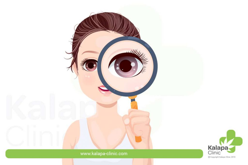 canabinóides afetam a visão - cannabinoids impact vision