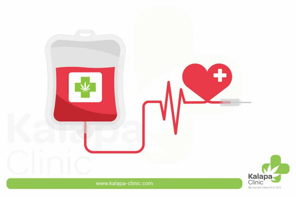 donacion de sangre-don du sang