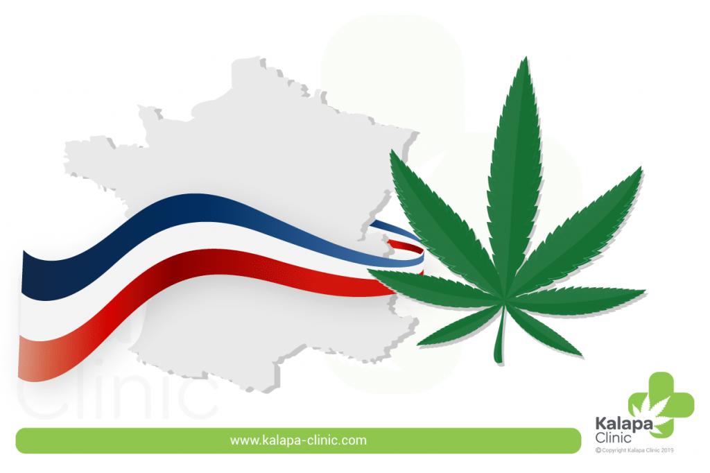 loi française sur le cannabis-marco legal cannabis medicinal en Francia