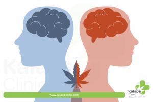 los efectos psicoactivos y psicotrópicos de los cannabinoides