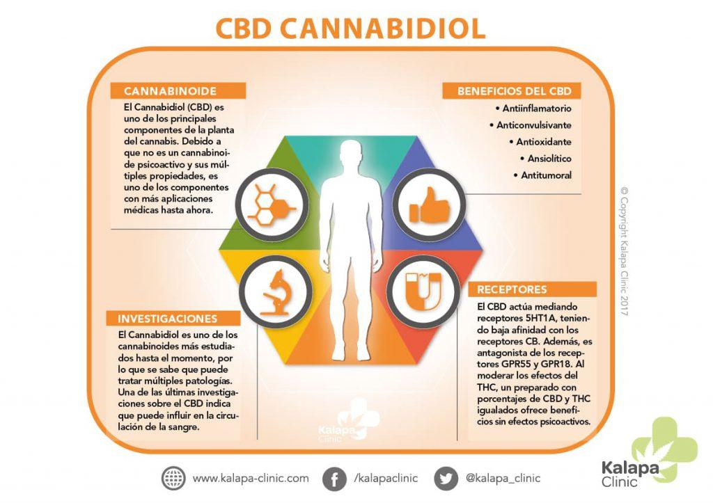 Infografia Cannabidiol propiedades terapeuticas | Kalapa Clinic