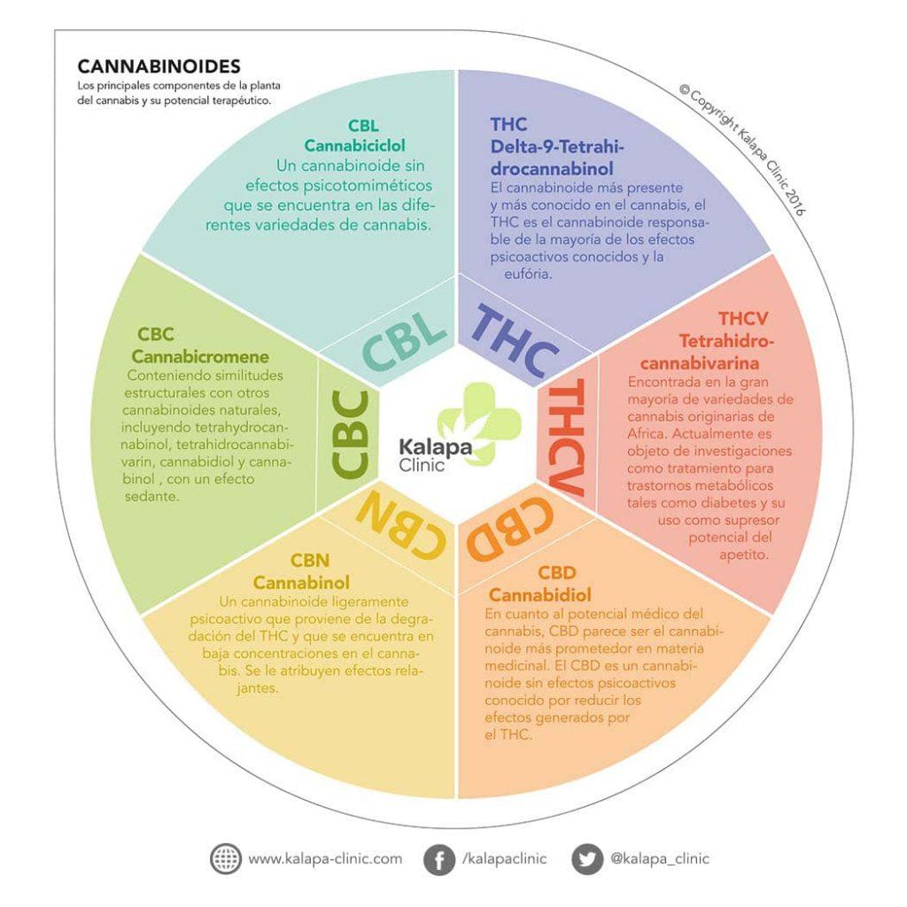 Cannabinoides Terapeuticos