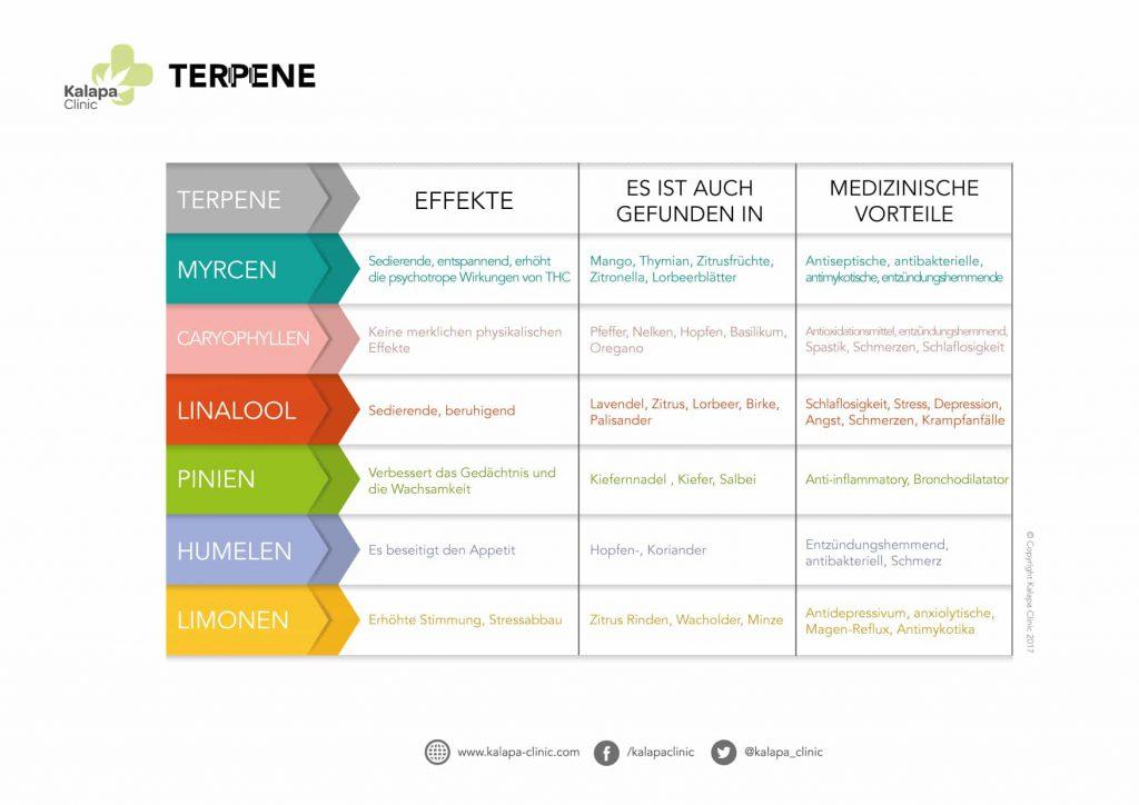 Auswirkungen von Terpenen auf Menschen | Kalapa Clinic