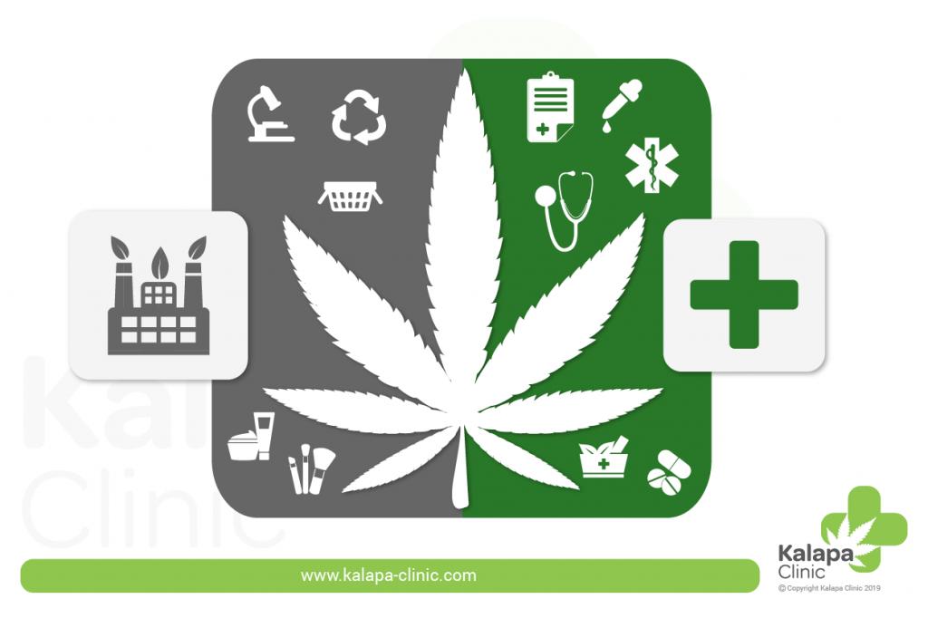 diferencia cañamo y  marihuana