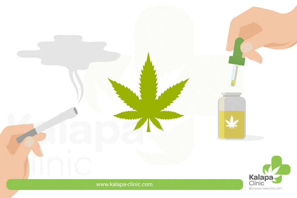 cannabis medicinal y recreativo