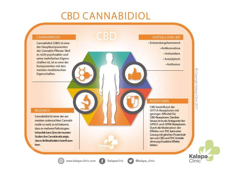 Infografiken über Cannabidiol | Kalapa Clinic